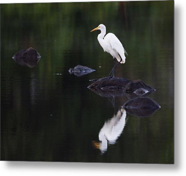 Great Egret Reflection Metal Print