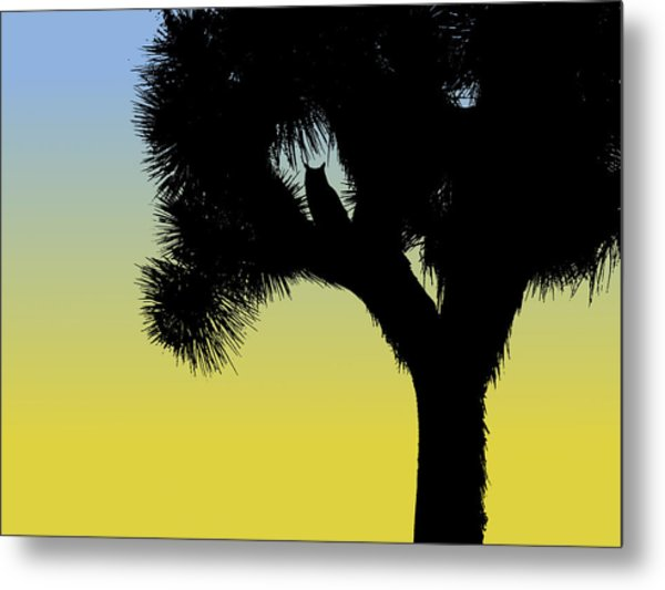 Great Horned Owl In A Joshua Tree Silhouette At Sunrise Metal Print
