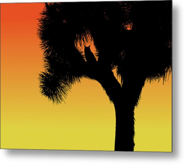 Great Horned Owl In A Joshua Tree Silhouette At Sunset Metal Print