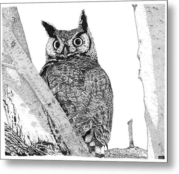 Great Horned Owl In A Tamarisk Metal Print