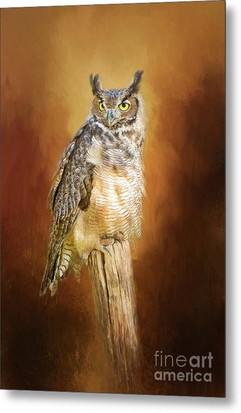 Great Horned Owl In Autumn Metal Print