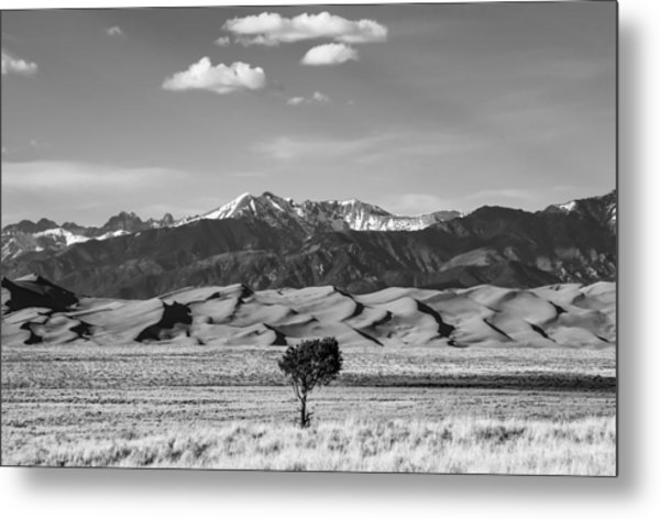 Great Sand Dunes Metal Print