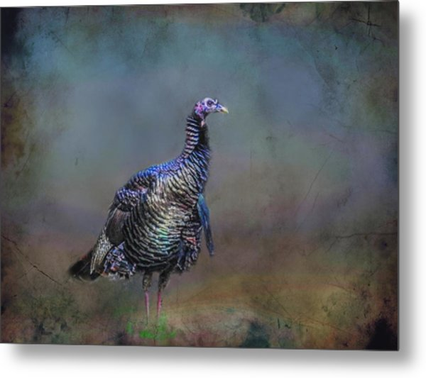 Great Smokey Turkey Metal Print
