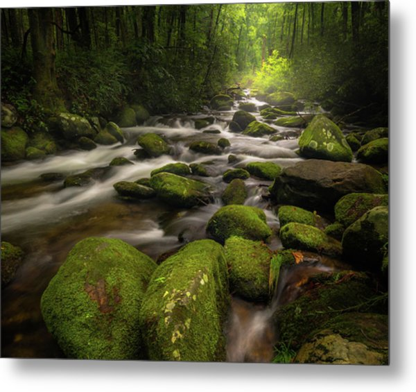 Great Smoky Mountains Roaring Fork Metal Print