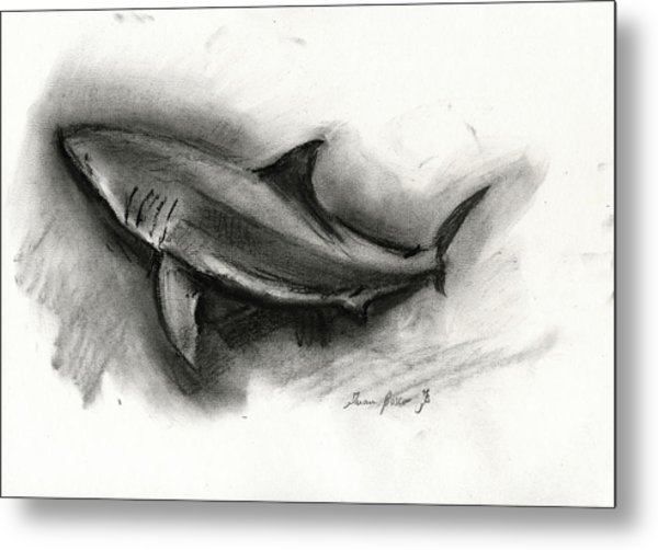 Great White Shark Drawing Metal Print