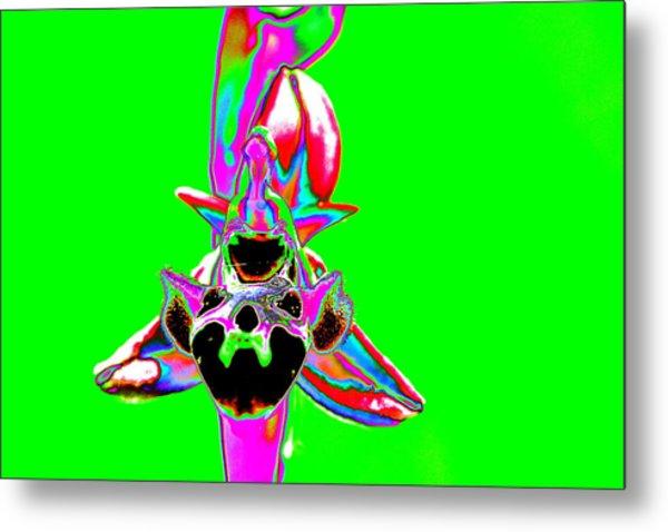 Green Bee Orchid Metal Print