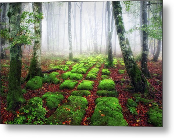 Green Brick Road Metal Print