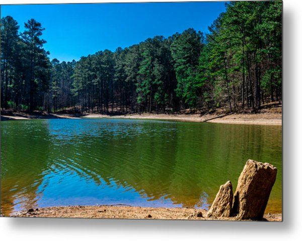 Green Cove Metal Print