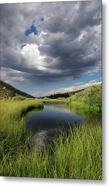 Green Creek 2 By Frank Hawkins Metal Print