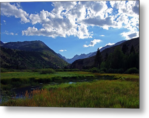 Green Creek Meadow 2 Metal Print