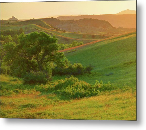 Green Dakota Dream Metal Print