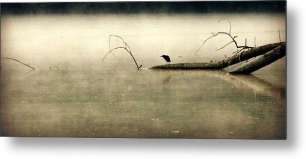 Green Heron In Dawn Mist Metal Print