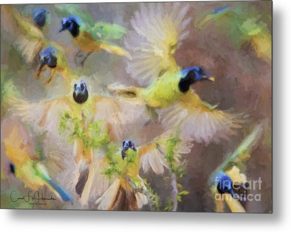 Green Jay Collage Metal Print