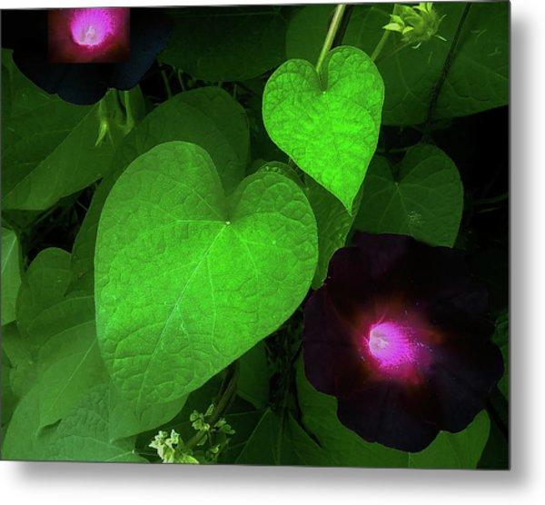 Green Leaf Violet Glow Metal Print