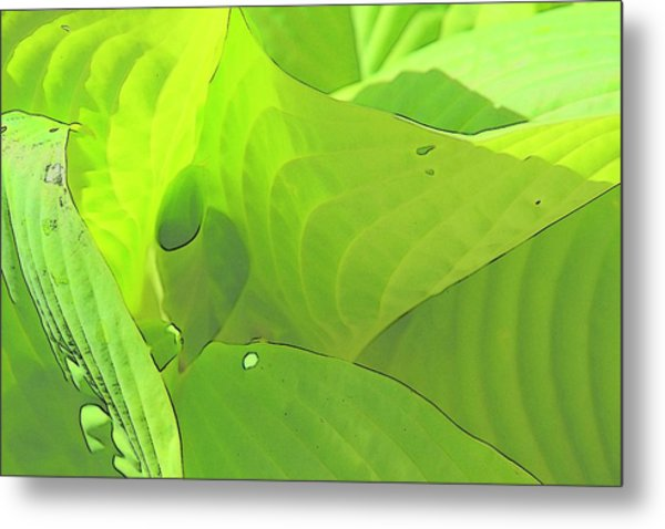Green Leaves Sketch 2 Metal Print