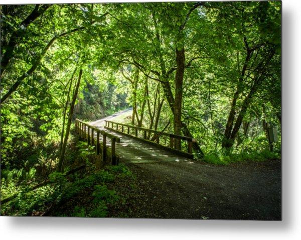 Green Nature Bridge Metal Print