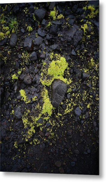 Green On Black On Iceland's Fimmvorduhals Trail Metal Print