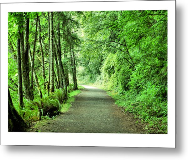 Green Path Metal Print by J D Banks