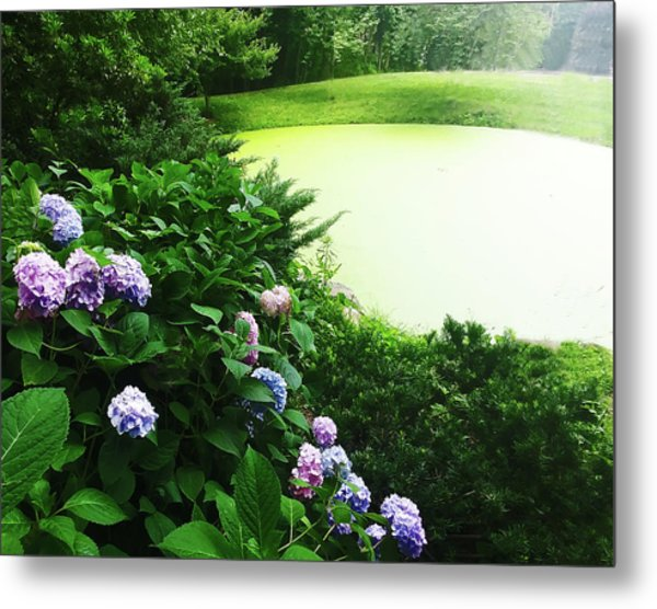 Green Pond Metal Print