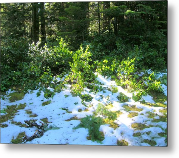 Green Snow Metal Print