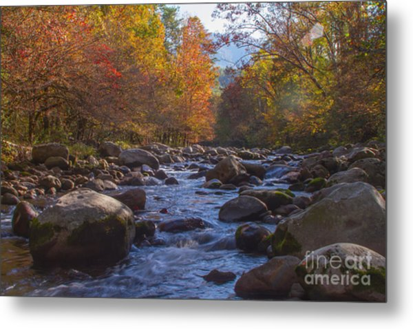 Greenbriar Creek Metal Print