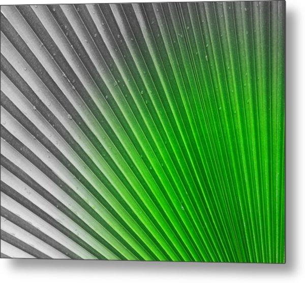 Greenish Palm Metal Print by Gigi Kobel