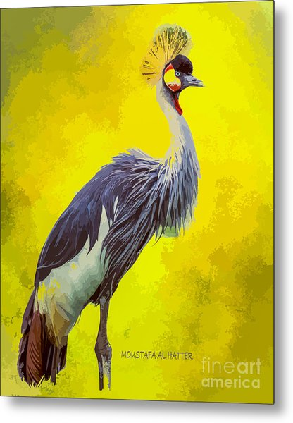 Grey Crowned Crane Metal Print