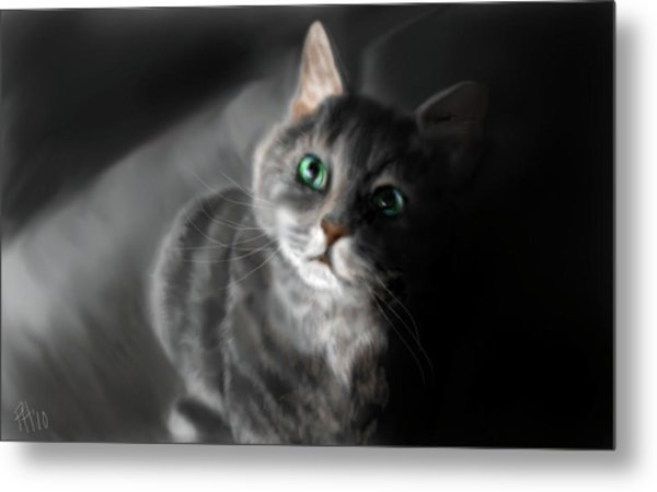 Grey On Gray Metal Print by Peggy Hickey