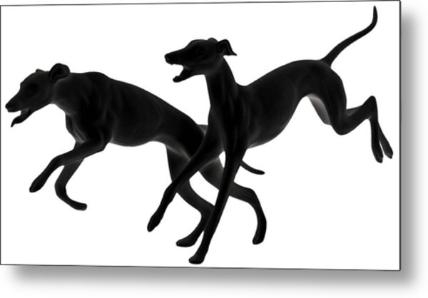Greyhounds Travelling At 45 Mph Metal Print