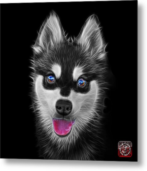 Greyscale Alaskan Klee Kai - 6029 -bb Metal Print