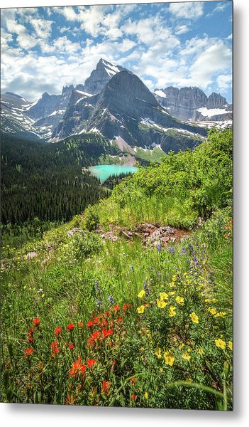 Grinnell Flowers // Grinnell Hiking Trail, Glacier National Park  Metal Print
