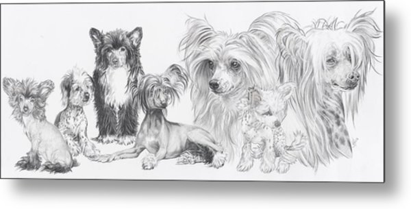 The Chinese Crested And Powderpuff Metal Print