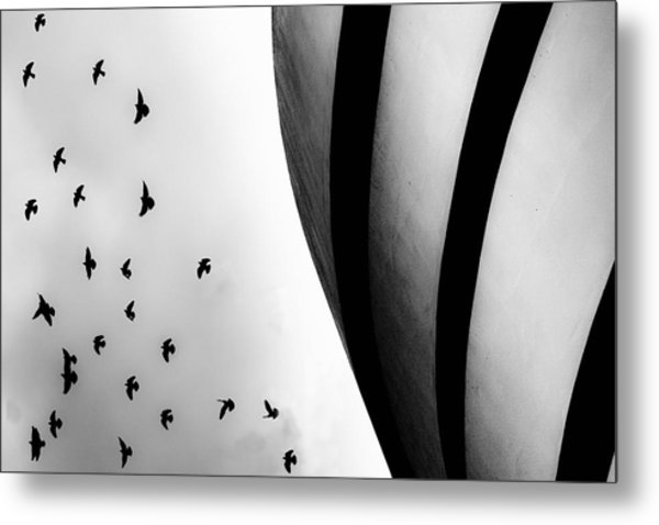 Metal Print featuring the photograph Guggenheim Museum With Pigeons by Dave Beckerman