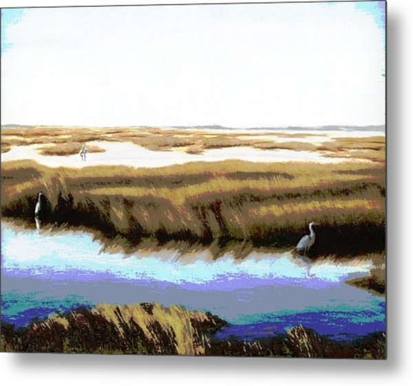 Gulf Coast Florida Marshes I Metal Print