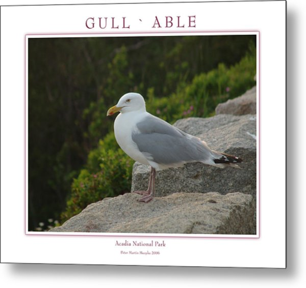 Gull Able Metal Print by Peter Muzyka