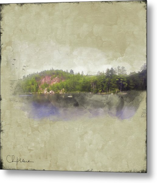 Gull Pond Metal Print