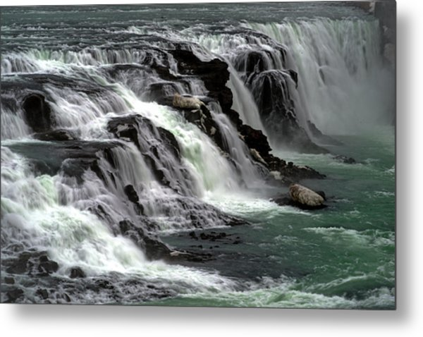Gullfoss Waterfalls, Iceland Metal Print