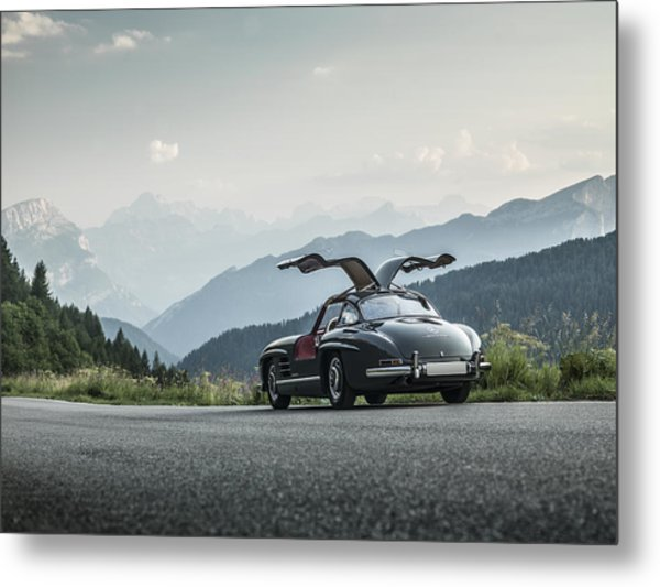 Gullwing In The Mountains Metal Print