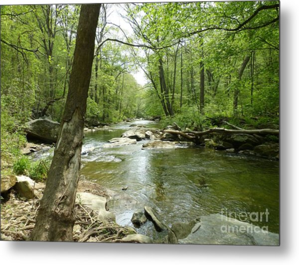 Gunpowder Falls - Ncr Trail Metal Print