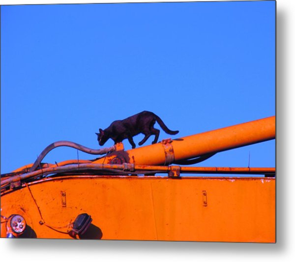 Gunther Gets On Top Of Things Metal Print