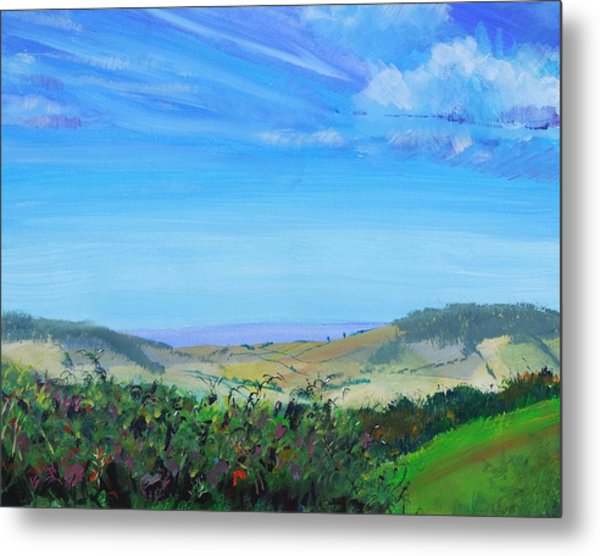Haldon Hills Sea View Metal Print