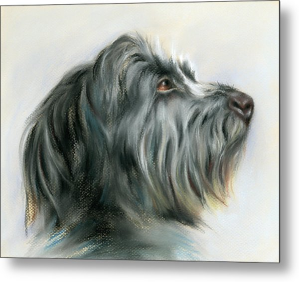 Hamish The Wolfhound Metal Print