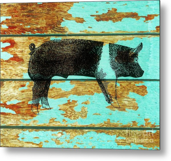 Hampshire Boar 1 Metal Print