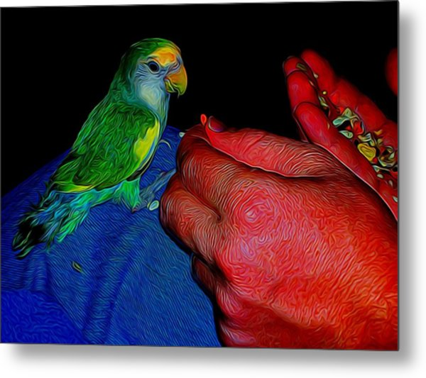 Hand Fed In Abstract Metal Print
