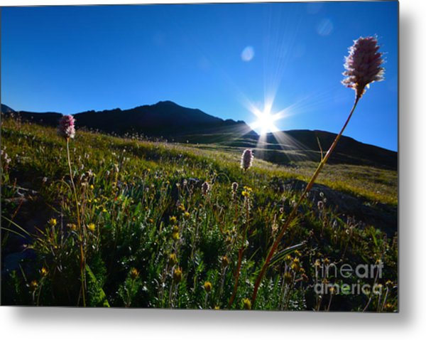 Metal Print featuring the photograph Handies Peak Sunrise by Kate Avery