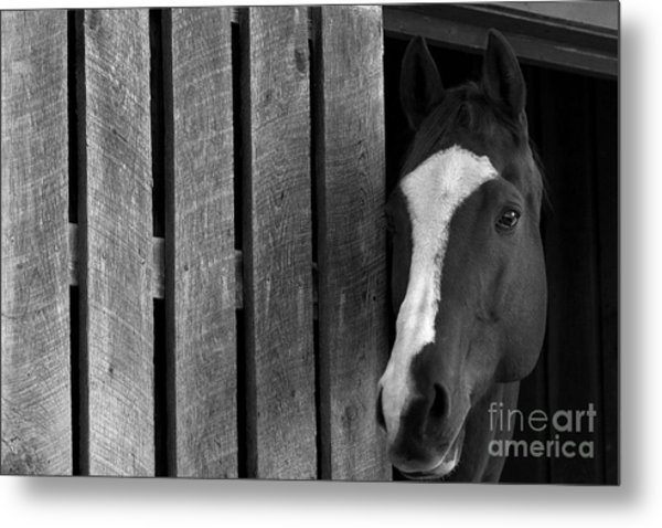 Handsome T Metal Print