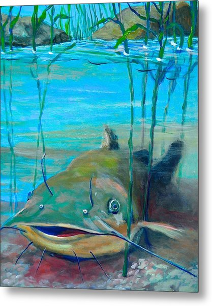 Happy Catfish Metal Print