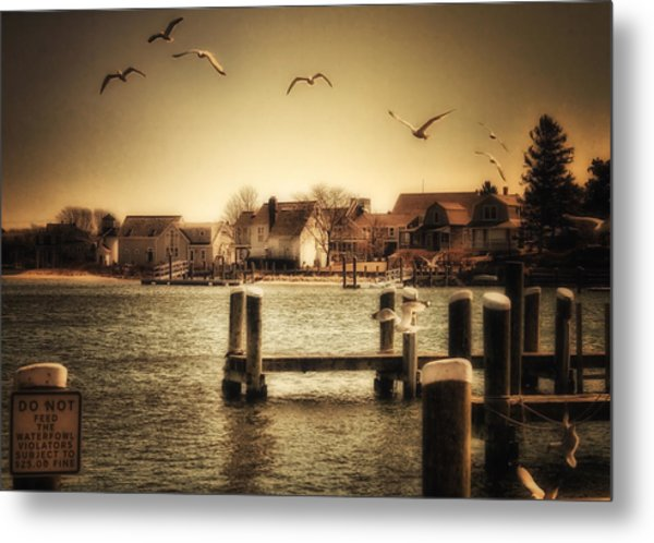Harbor View Metal Print by Gina Cormier