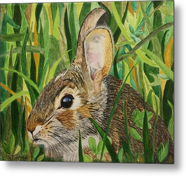 Hare's Breath Metal Print