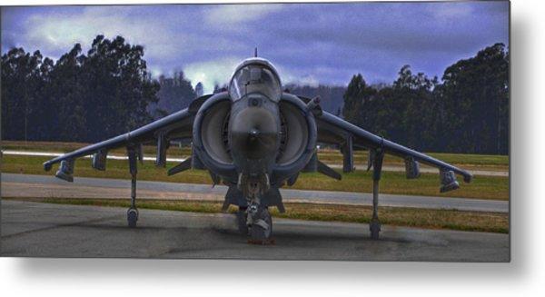 Harrier Metal Print by Paul Owen